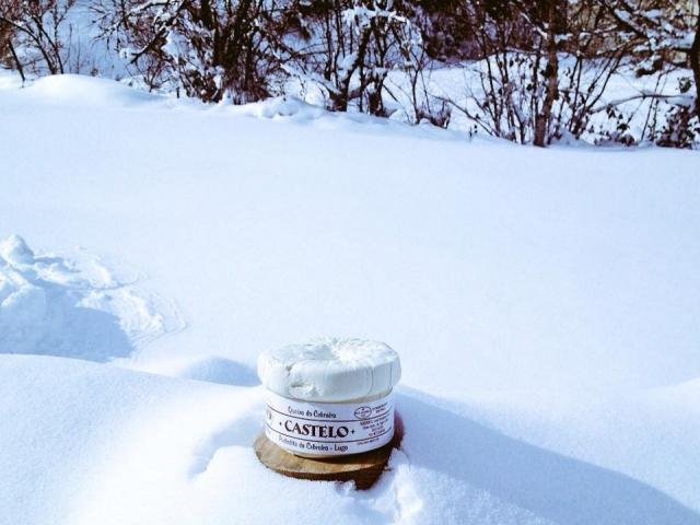 Queso Cebreiro Castelo sobre fondo nevado.