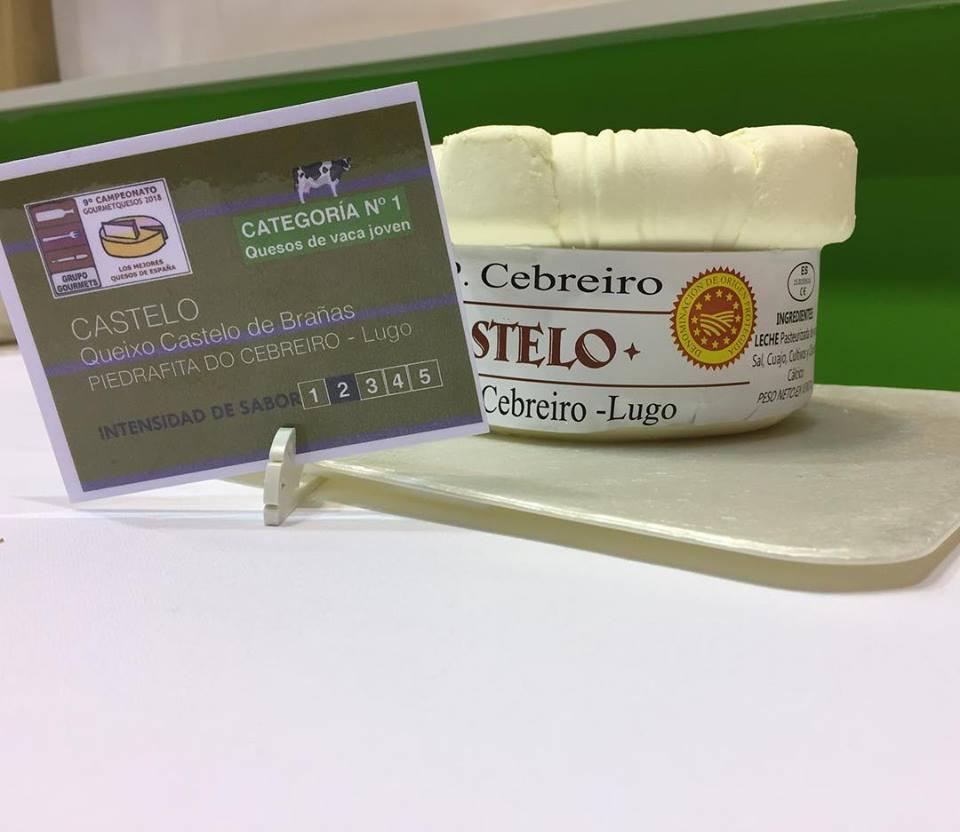 Queso de Vaca Joven premio Gourmet de Quesos 2018